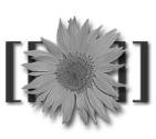 Делаем эффект оттенки серого (grayscale) на PHP GD Lib